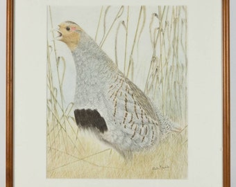 Partridge Bird in Tall Grass Modern French Watercolour Wooden Frame