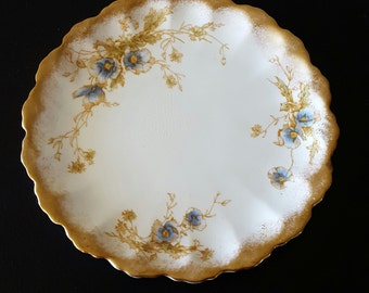 Doulton Burslem plate/ Rutland/ US patent R 168550/ collector plate/ antique plate/ english china plate/ afternoon tea/ 1900s plate
