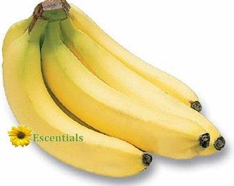 1/2 Ounce Banana Flavor Oil