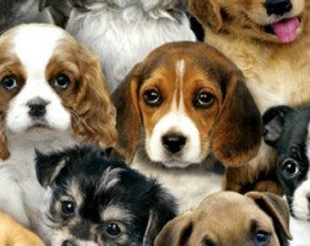 Adorable pets, puppies, many breeds--fabric by the yard--Elizabeth's Studio, cotton