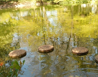 Fine Art Nature Photograph, Nature Photography, Zen Wall Art, Zen Decor