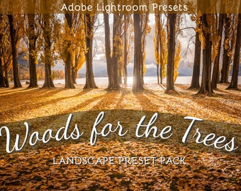 The Woods for the Trees: Lightroom Preset Pack