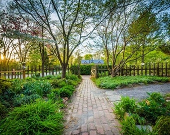 Gardens at Cylburn Arboretum, in Baltimore, Maryland.   Photo Print, Stretched Canvas, or Metal Print.