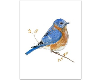 Bluebird Watercolor Art Print, Contemporary Wild Bird Art, Modern Rustic Wall Art, Cottage Chic Decor, Bird Lovers Gift, Gift for Her