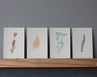 Set of 4 Letterpress Botanical Prints / Postcards