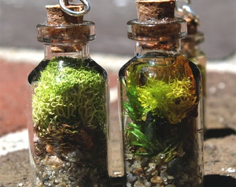 40mm x 15mm Terrarium and Aquarium Miniature Bottle Charms