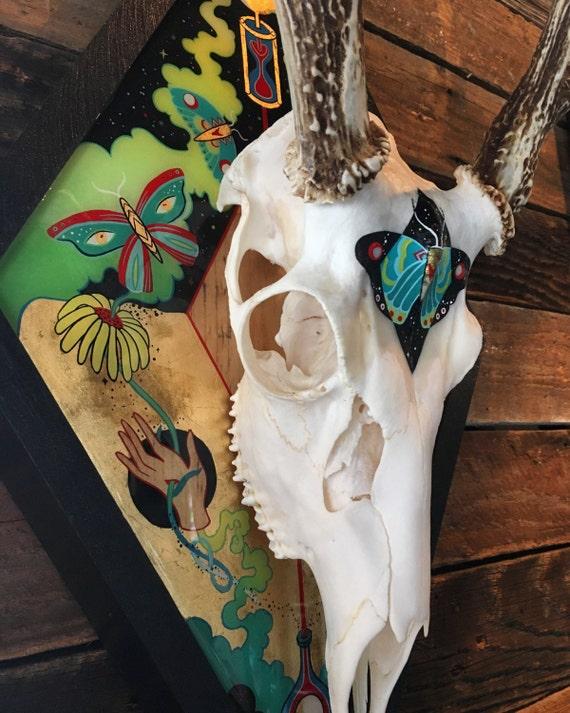 Vivid Vision || Mounted Deer Skull