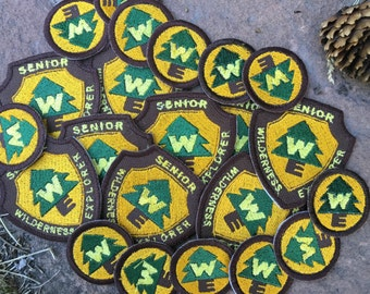UP! Senior Wilderness Explorer Embroidered Iron-On Badge Patch Disney Pixar