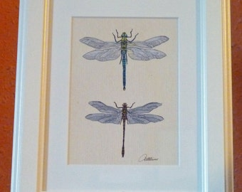 Dragonfly Print Dragonfly Picture Dragonflies Painting Dragonfly Illustrative Print-Emperor,Golden Ringed dragonflies a very popular choice