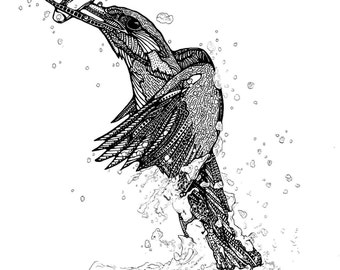 Kingfisher (A4) Original Art