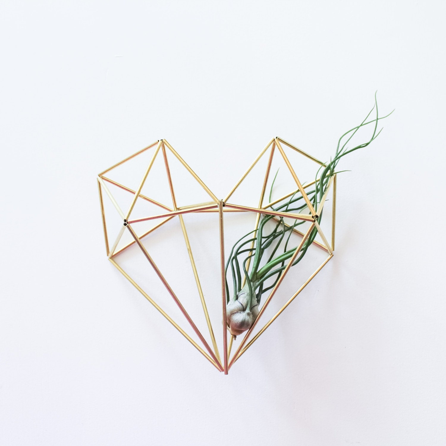 The heart brass himmeli modern minimalist geometric for Geometric air plant holder