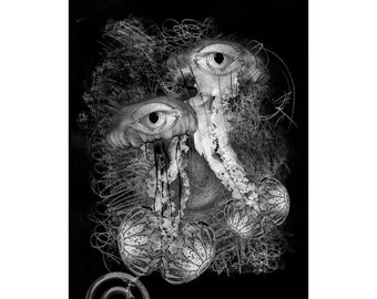 Sea Life #8, Inkjet print  7x9 image on 11x14 archival paper