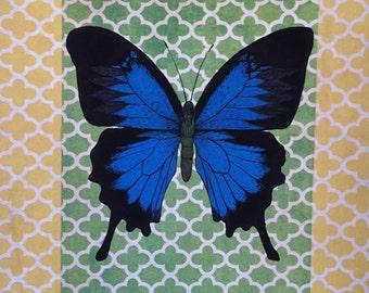 Blue Butterfly GICLEE PRINT 6 in x 8 in (14 cm x 20 cm)