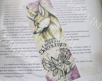 Bookmark Fox of the sands 'foxes, charms and spells