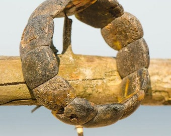 Not polished Baltic Amber bracelet
