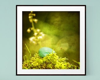 Egg Print, Spring Decor, Woodland Decor, Robin Egg, Nature Photography, Forest Print, Blue and Green Wall Art,Egg Photograph,Moss Photograph