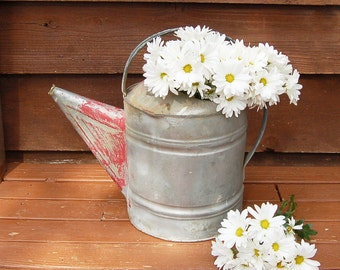 Large Galvanized Watering Can, Vintage Watering Can, Number 16 Watering Can