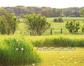 Michigan Scenic Landscape Photography Up North Farm Field Pasture | Green Prairie Meadow Wall Decor | Fence Row Trees | Mowed Trail Print