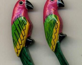 Parrots Earrings