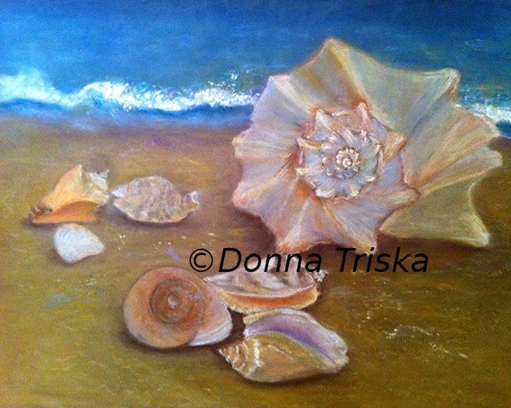 Beach Treasures, Sea Shell Art. Beach Ocean