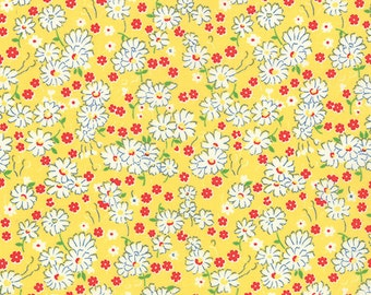 Moda 30s Playtime 32795-15...Sold in continuous cut 1/2 yard increments