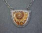 Ammonite Fossil, Sterling Silver, Designer, Pendant