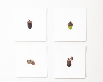 Acorn Print Set Watercolor Botanical / 4x4 / Nature Study Autumn Woodland / Decor Gifts Under 30 Minimalist Fine Art / Miniature Collection