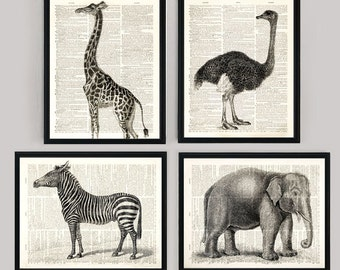 Animal Set Dictionary art prints Buy 3 Get 1 free! Giraffe, Ostrich, Zebra and Elephant on vintage dictionary paper 8x10 inch