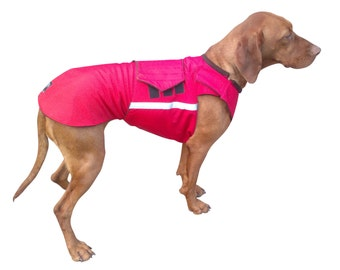 Vizsla Winter Dog Coat - Custom made Dog Raincoat - Dog Jacket - Waterproof / Fleece coat - Dog clothes - Custom made for your dog