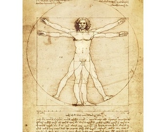 Vitruvian Man Leonardo da Vinci print poster wall art 11 x 14