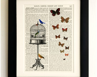 FRAMED ART PRINT on old antique book page - Birds with Birdcage and Butterflies, Vintage Upcycled Wall Art Print Encyclopaedia Dictionary