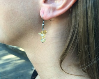 Stainless Citrine Earrings