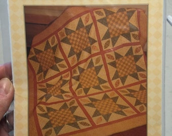 Fig Tree Quilts CHECKERBOARDS IN BLOOM quilt pattern