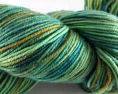 Sock/Fingering weight Hand Dyed  Merino Superwash/Nylon Yarn 100 grams -Rain Forest Colourway