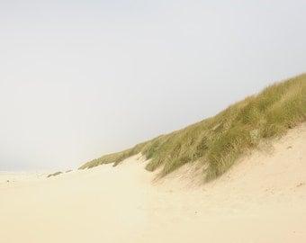 Sand Dune Print,