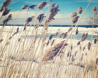 Breeze. 8x10 unframed photo print