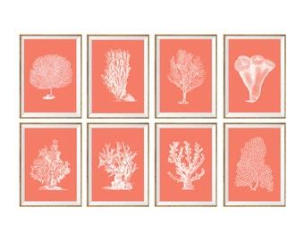 Sea Coral Art Print SET of 8, seaweed prints, seaweed art, seaweed poster, sea coral poster, coral poster set, coral illustration, wall art