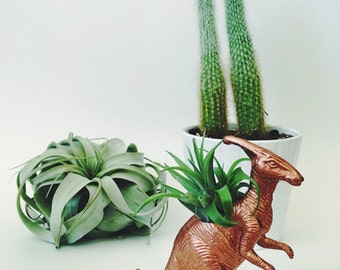 Small Copper Parasaurolophus / Parasaur Dinosaur Planter Air Plant; Dinosaur Planter; Air Plant; Desk Accessory; Home Decor; Gift Idea