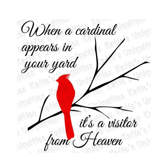 When A Cardinal Appears In Your Yard It S A Visitor From