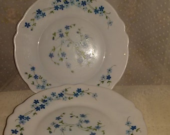 "french vintage""Arcopal""6 dessert with a décor of forget-me-not plates""/ Forget me not platte"