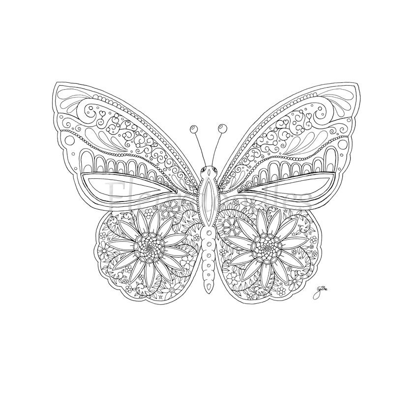 Adult Coloring Page Butterfly Printable Digital Download