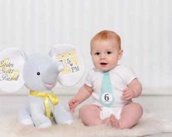 Birth stats elephant baby keepsake personalized elephant personalized baby gift personalized stuffed animal baby keepsake dumble elephant cubbie negle Images