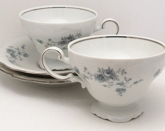 Haviland Blue Garland Tea Cup and Saucer ~ Johann Haviland ~ Bavaria, Germany ~ Tea Cup and Saucer, Set of Two