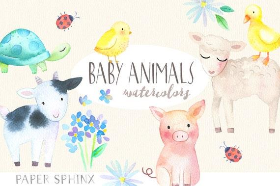 Baby Farm Animals Clip Art baby animals watercolor clipart springtime farm animals
