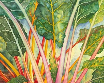 Rainbow Chard - Matted Giclée Print of Orignal Watercolor by Margy Stancill Rodgers