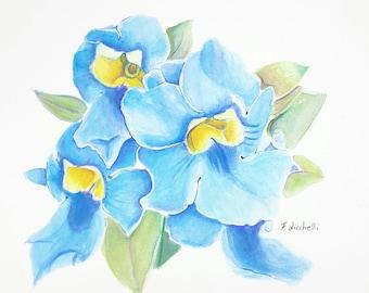 Watercolor, blue flowers, ooak, one of a kind,original,28x28 cm./11x11 Inc. - Wall art,living, bedroom, kitchen, gift idea.