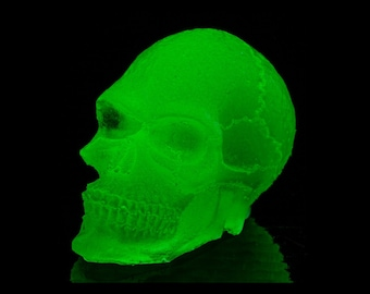 GLOW-in-the-Dark Skull - Make it a MAGNET for free! Just ask!