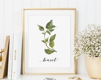 Basil Printable, Kitchen Art, Herb Printable, Kitchen Printable, Herb Wall Art, 5x7 and 8x10 Printable, Instant Download