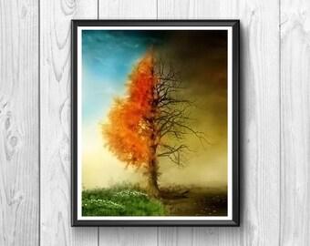 Summer, winter, tree