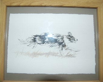 "Running Collie by Ceri Williams 9""x6.52"" (FRAMED 10""X13.5"")"